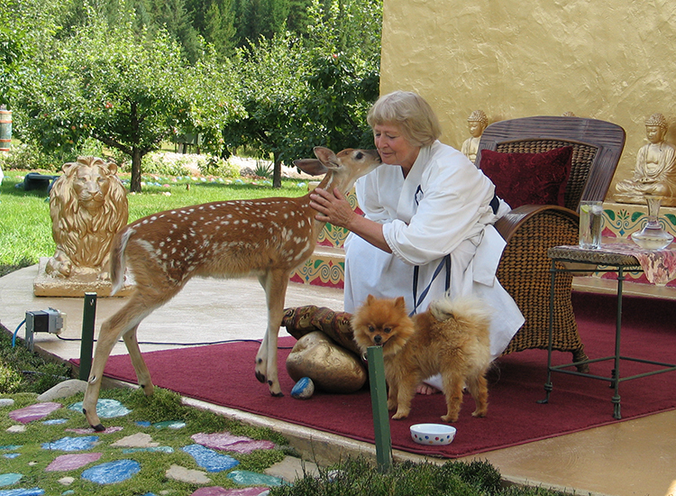 Wisdom Master Maticintin surrounded by Leo, the deer, and Dorji, the Pomerranian at a Teaching at the Stupa.
