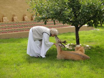 Wisdom Master Maticintin and Leo the deer