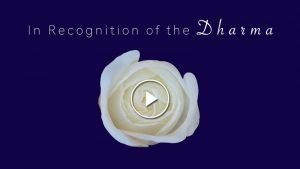 Dharma Tn W Button